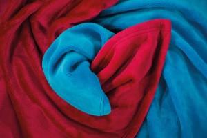 Silky Titelbild